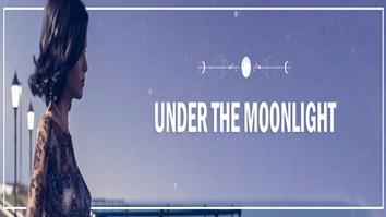 Sob o luar Under the Moonlight (1)